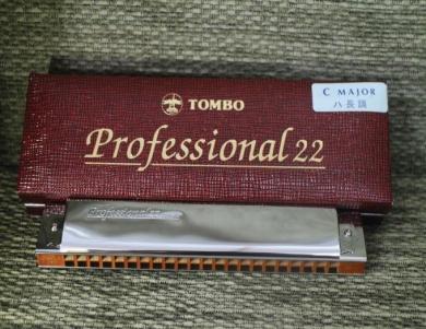Professional 22 (No.1722)